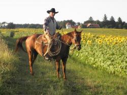 Erichs Ranch lovagoltatás